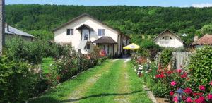 Casa Bunicilor Dâmbovița